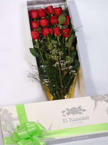 Caja Elegancia: 12 rosas importadas