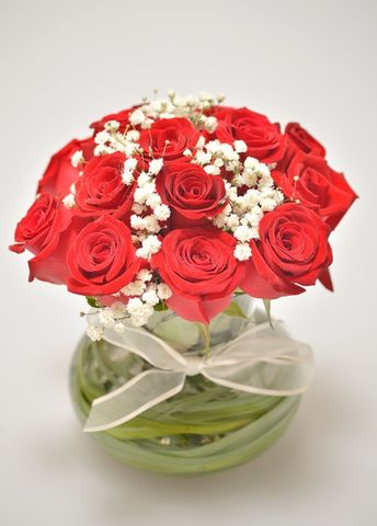 Rosas elegancia