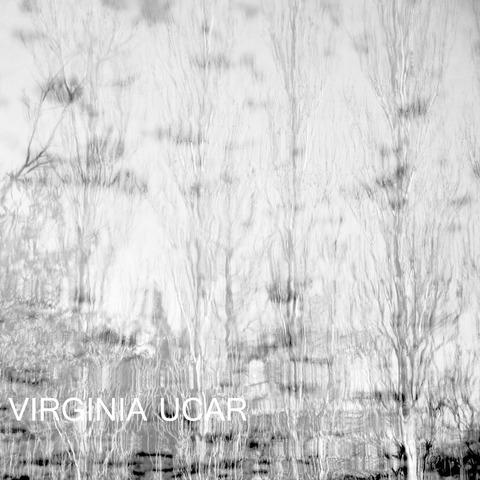 Virginia Ucar