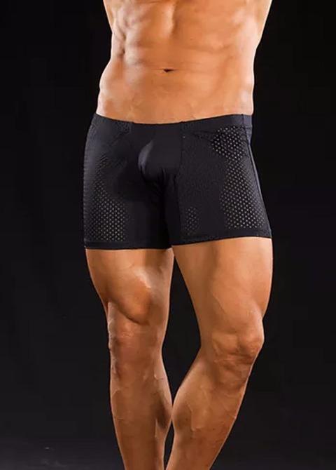 Boxer Nick Negro