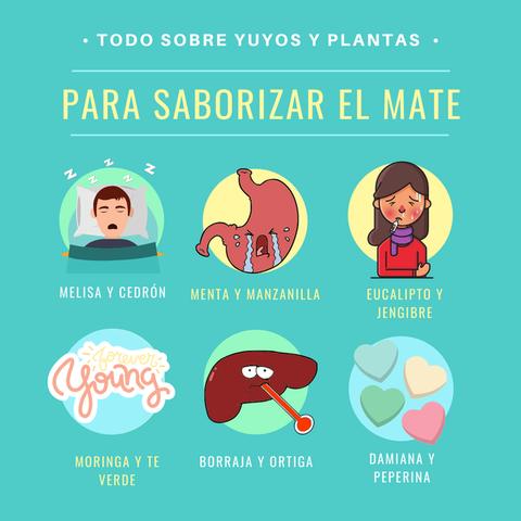Saborizar el Mate: plantas y sus propiedades