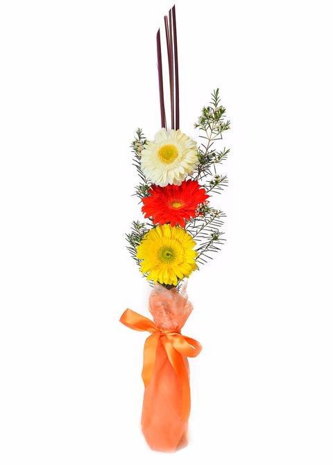 Simpatía: florero con 3 gerberas