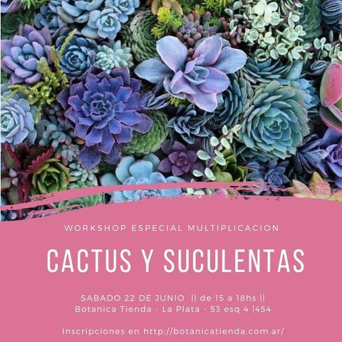 Taller de Multiplicacion de cactus y suculentas
