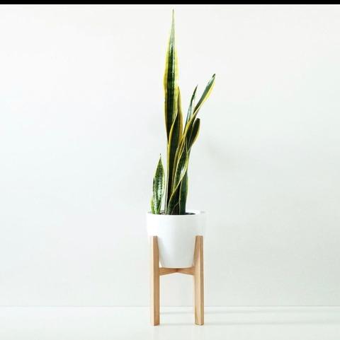 Maceta L con pie de madera medio