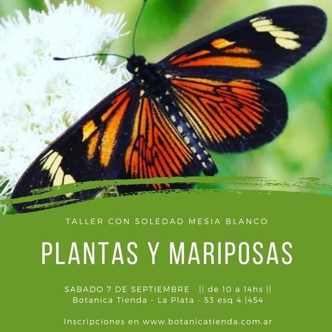 Taller de Plantas y Mariposas